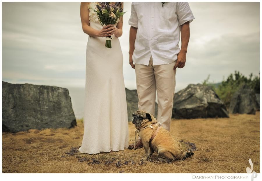 Dog and his Owners West Coast Weddings Magazine