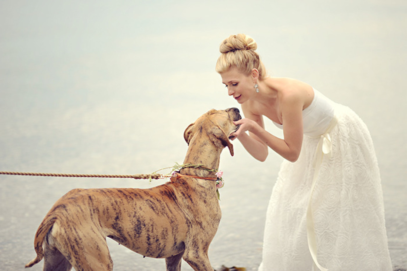 Bride and Beautiful Dog at Vancouver Island wedding