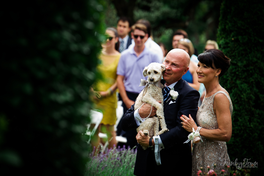 Your Pet at Your Wedding Vancouver Island Magazine