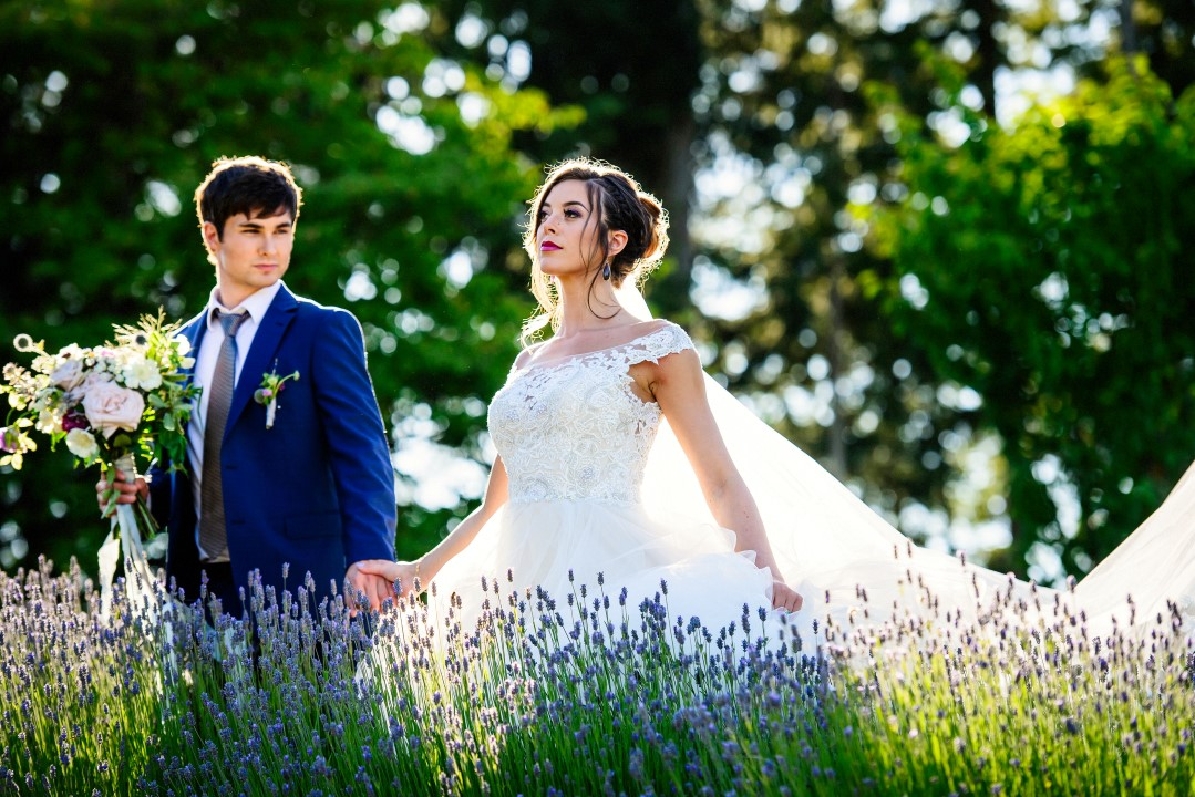 Couple walking in field of lavender Kristen Borelli Photography