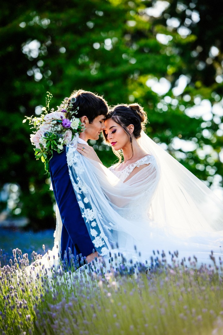Bride Kissing Groom in Field of Lavender Kristen Borelli Photography