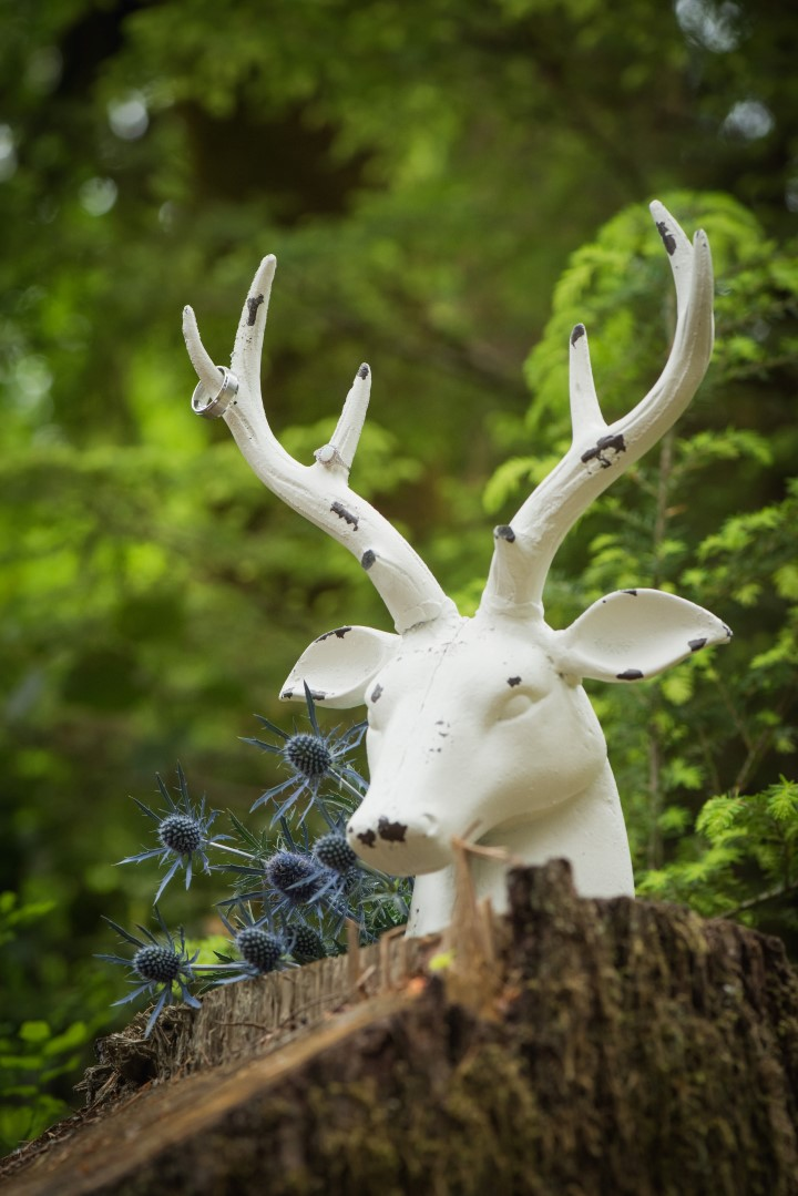 Deer in the Forest Boho River Romance West Coast Weddings
