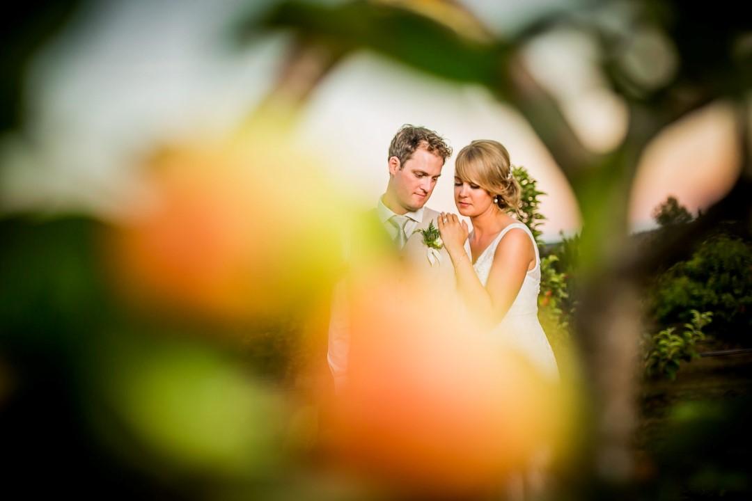 Suns Golden Kiss West Coast Weddings Magazine