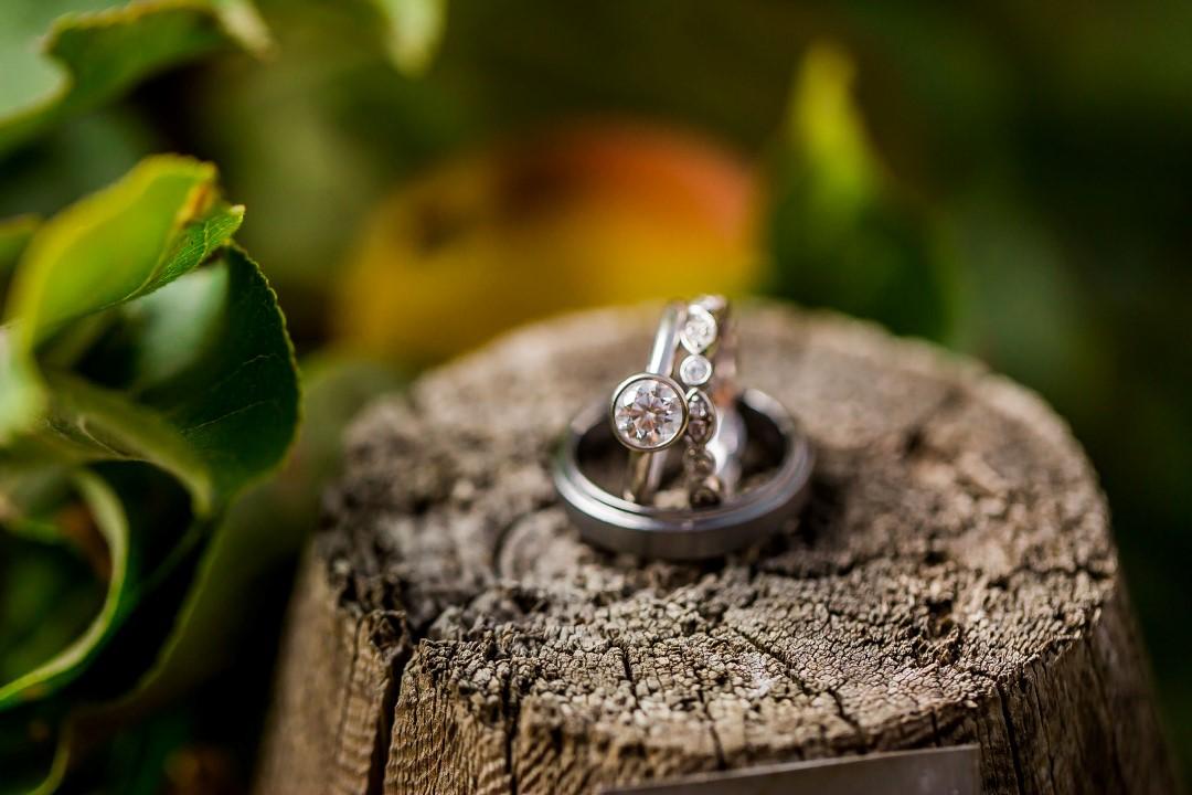 Rings on a Log Suns Golden Kiss West Coast Weddings Magazine