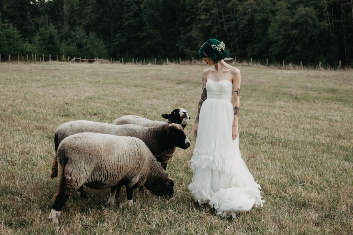 Bride with Sheep Inked + Pretty Brides West Coast Weddings Magazine