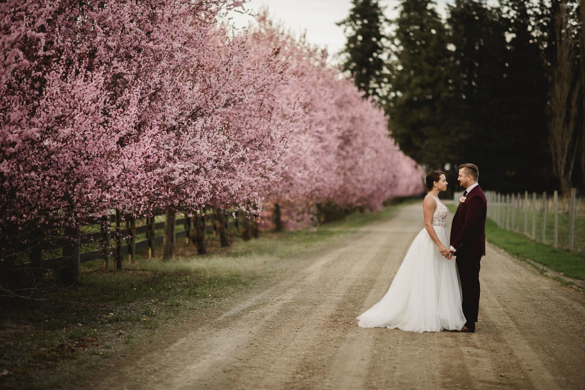 Pink Cherry Blossom Trees Ceremony Circle Arch   Erin Wallis Photography   Sublime Celebrations   Karen Bezaire   Shelter Point Distillery   The White Peony   Jims Clothes Closet   Purely Flower   Headquarters Hair Studio   Eden Street Spa   West Coast Weddings Magazine