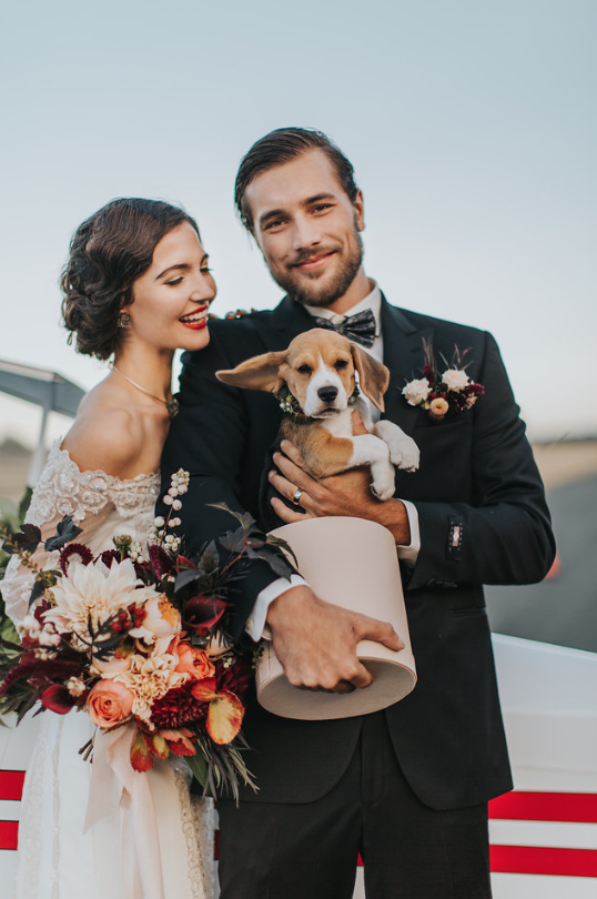 Come Fly With Me Groom and Puppy Sublime Celebrations Rivkah Photography Aviation Inspiration