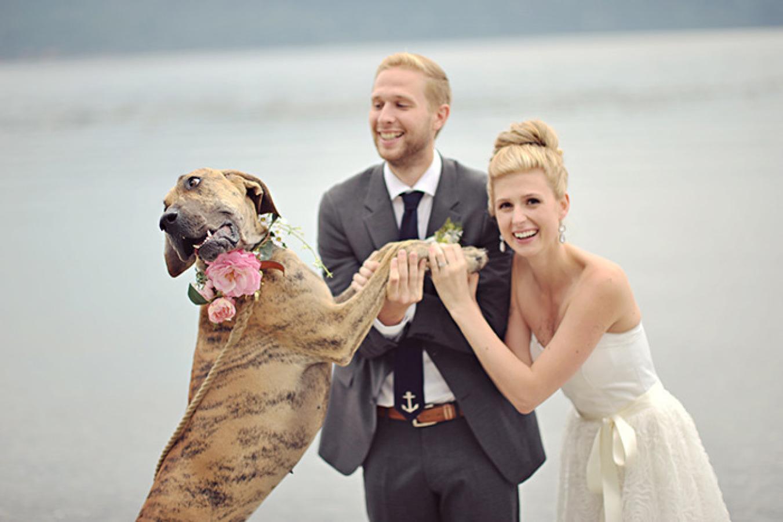 Pet Friendly Weddings at Black Rock Oceanfront Resort on Vancouver Island