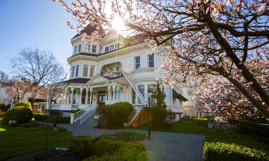 Perfect light at Pendray Inn and Tea House by Huntingdon Manor in Victoria British Columbia by West Coast Weddings Magazine