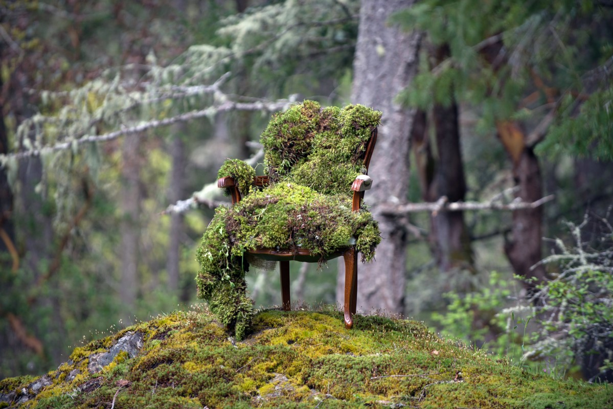 Enchanted Forest Moss Chair by Fleurtacious and Jen Steele PHotography Vancouver Island Weddings Magazine
