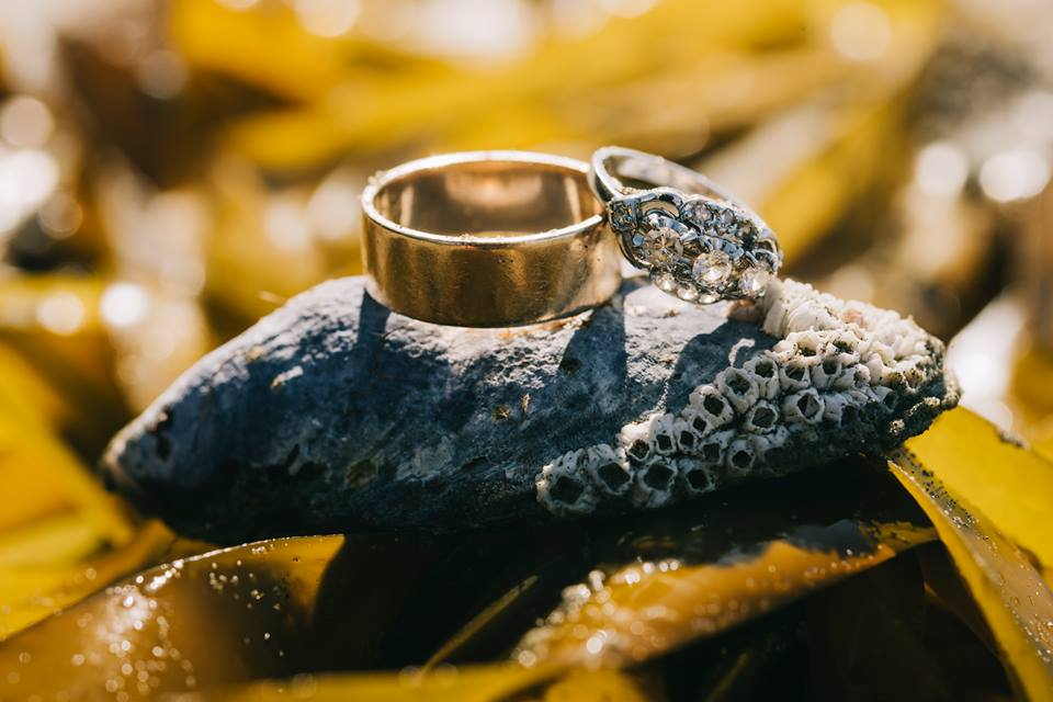 Tofino Elopement Rings on Beach Vancouver Island