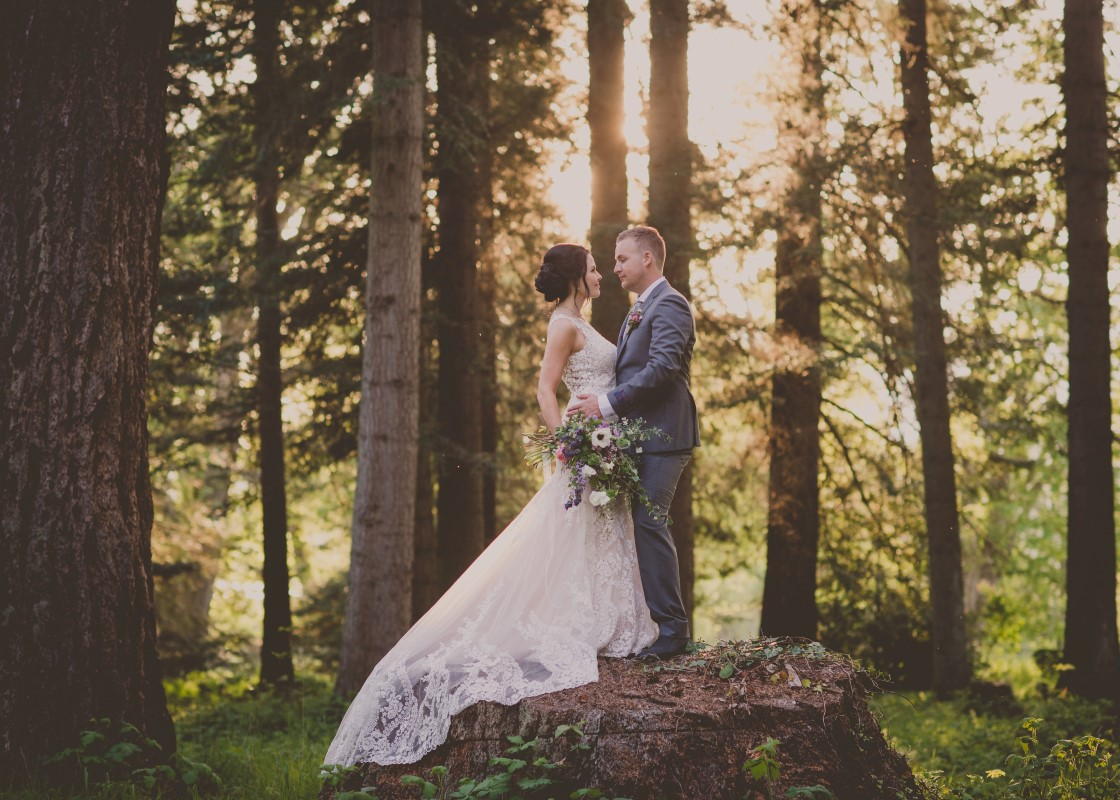 Local Love bridal couple on tree stump in forest Cowichan Valley Vancouver Island