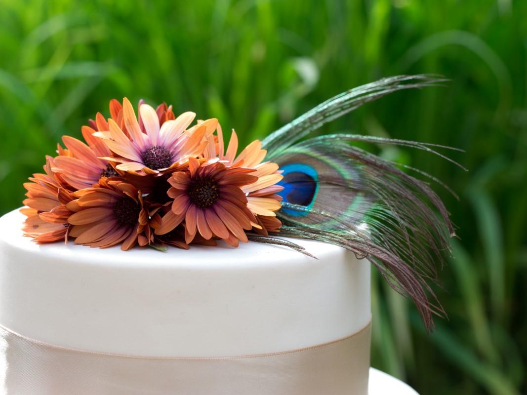 Orange Daisies with Peacock Feather on Wedding Cake