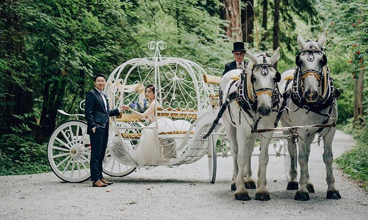 Bride and Groom in Fantasy Horse and Carriage by Cherry Wang Productions