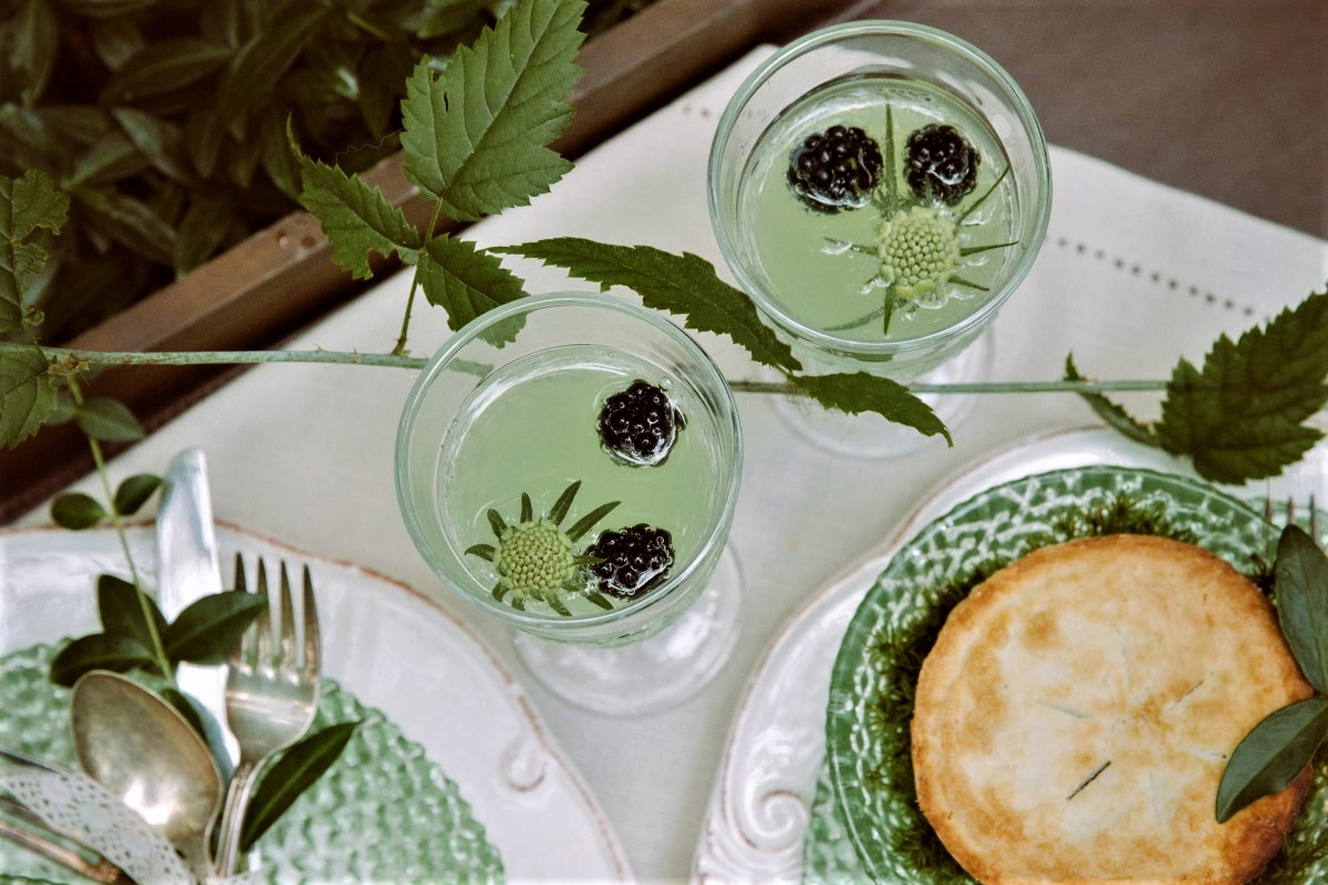 Whimsical Woodland wedding cocktails with blueberries on top
