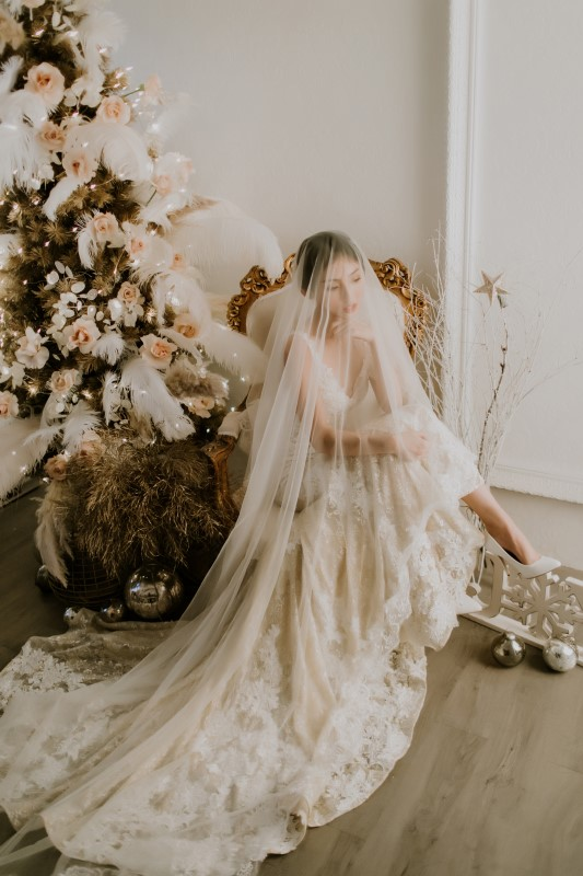 Dreamy White Wedding bride sitting nest to frosted pine tree with a very long veil covering her face