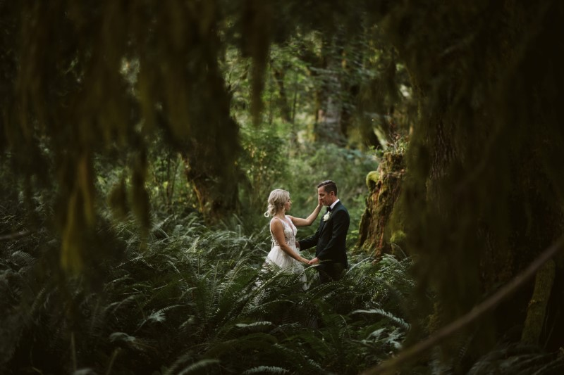 Wedding in the Woods couple among huge trees and ferns on Vancouver Island by Erin Wallis PHotography