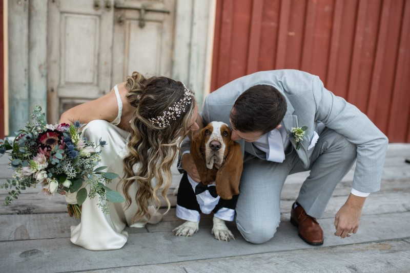 Wedding Couple with Basset Hound in Bow Tie and Tux at Telegraph Cove on Vancouver Island