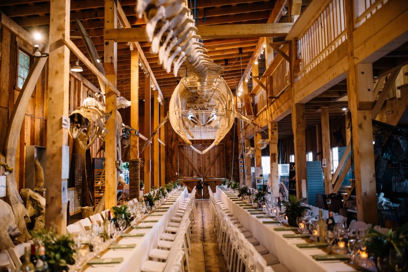 Whale Bones Hang Above Wedding Reception Long Table at Telegraph Cove by Masika May Photography