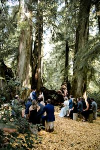 Rainforest Vows at Wickaninnish Inn Tofino BC