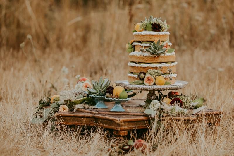 Stylish Southwest Wedding Cake and Fruit Decor by Vancouver Island Cobble Hill Cake Co.
