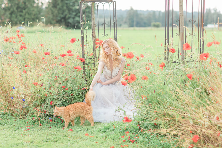 Bride and Orange Cat among garden poppies by Anzhelika Gekkelman Photography in Vancouver