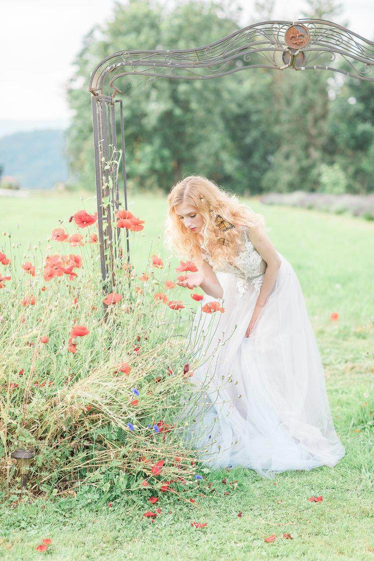 Bride stands under garden gate picking orange poppies in Vancouver Tuscan Garden