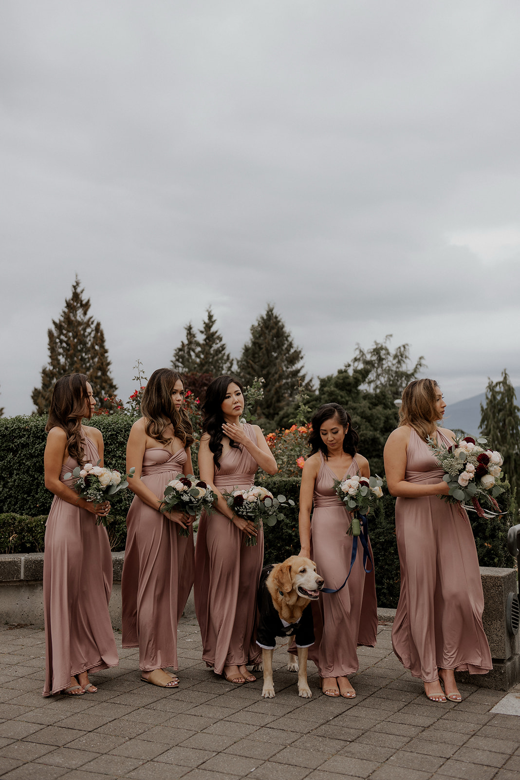 Bridesmaids in a row with beagle wearing rose gowns at Vancouver wedding