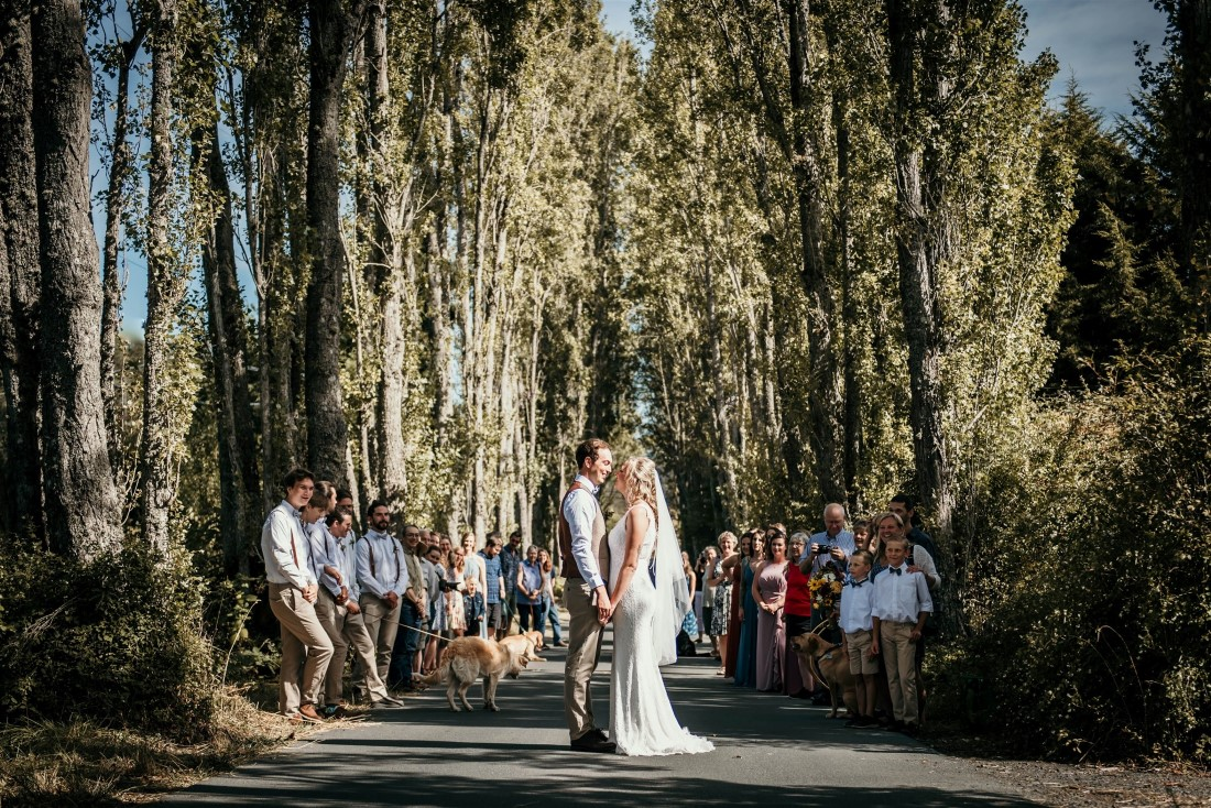 Bride and Groom stand on poplar tree road with guests behind them