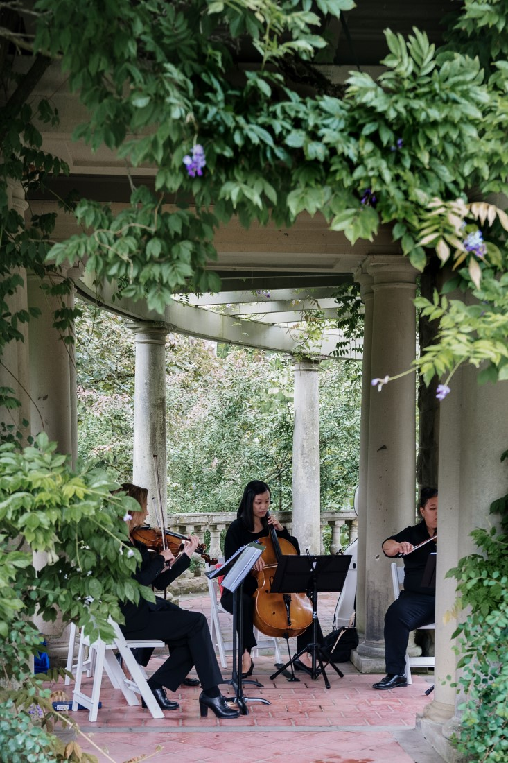 Blue Octopus String Quartet plays in the ivy covered gardens of Hatley Castle for wedding