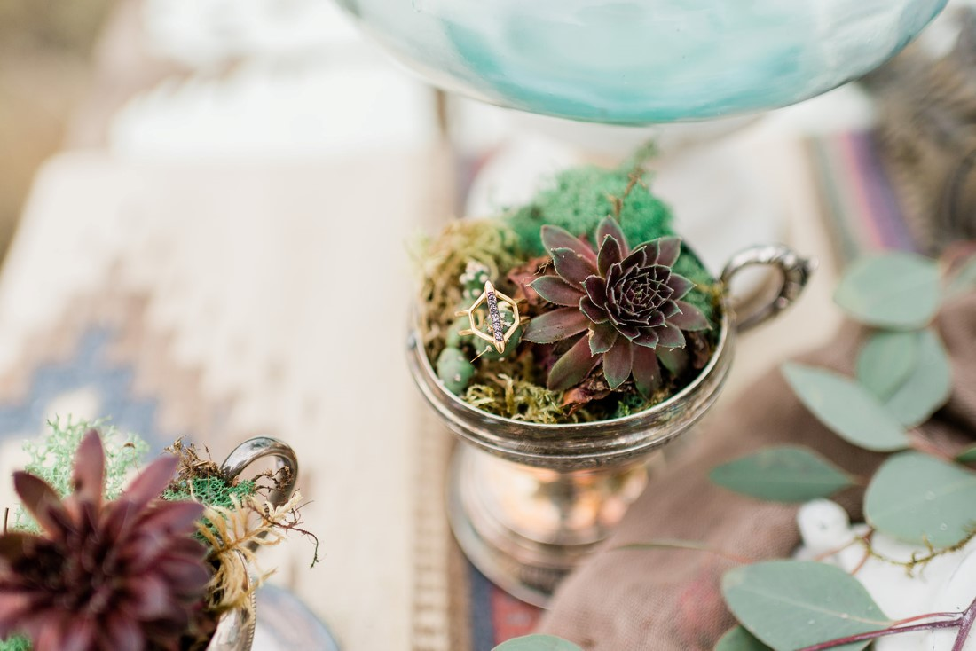Succulents sit in dishes on desert inspired table settings