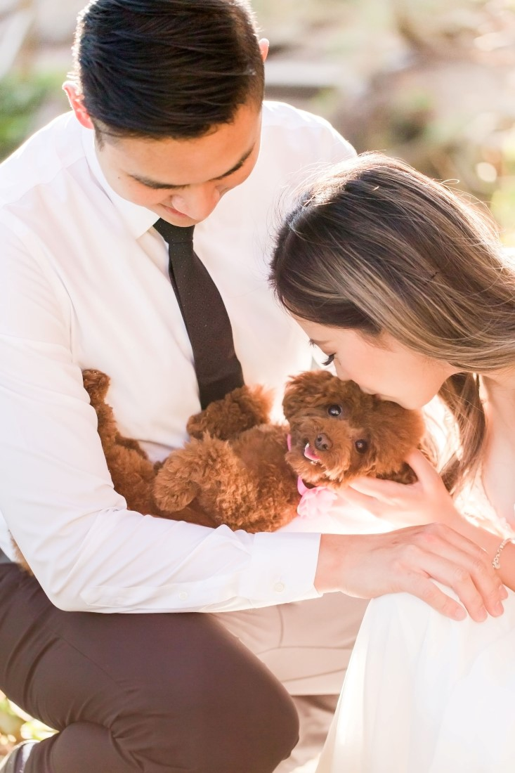 Pupply gets lots of love and kisses from engaged owners