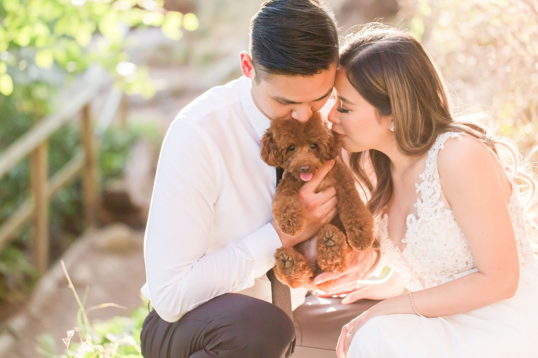 Pet Tips for your Engagement Shoot couple kiss their puppy by Vivian Ng