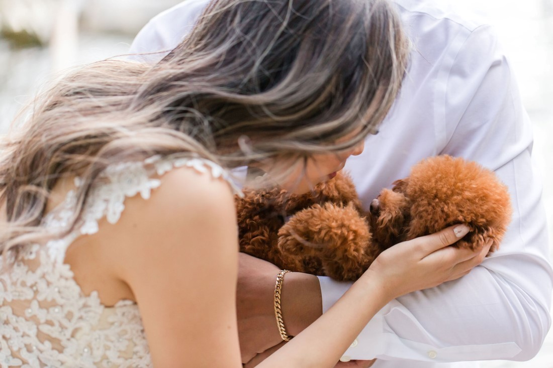 Bride leans in to kiss pawsome puppy held in grooms arms
