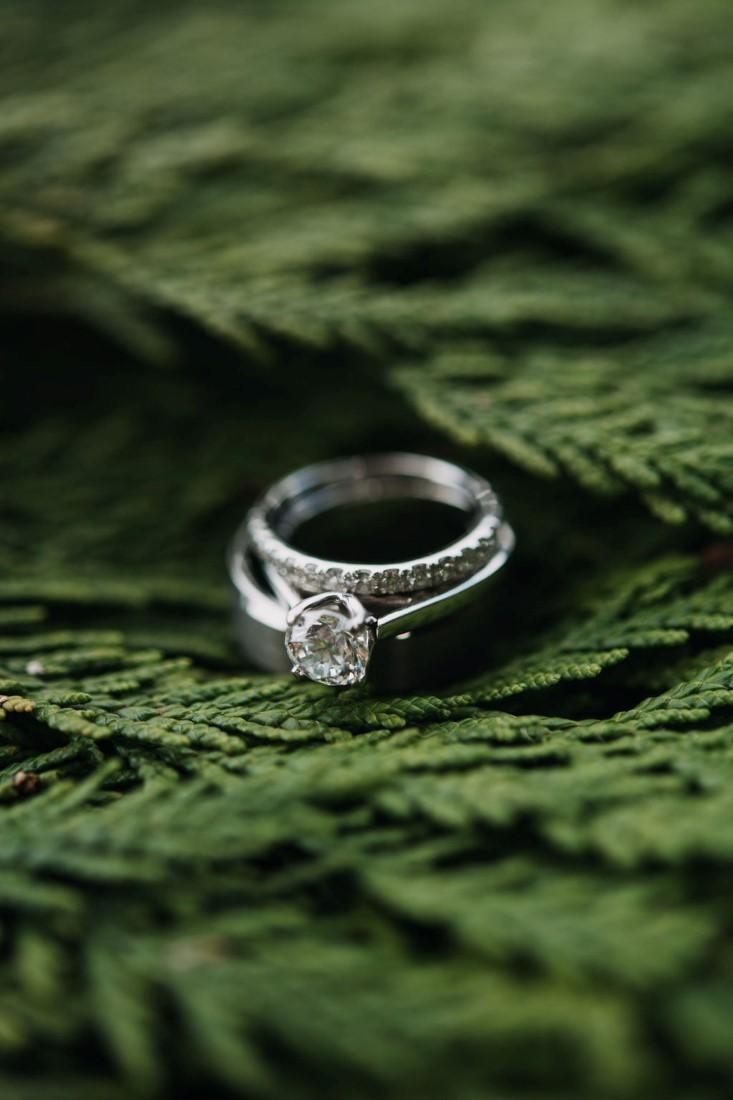 Diamond Rings on ferns by Bracey Photography Tofino