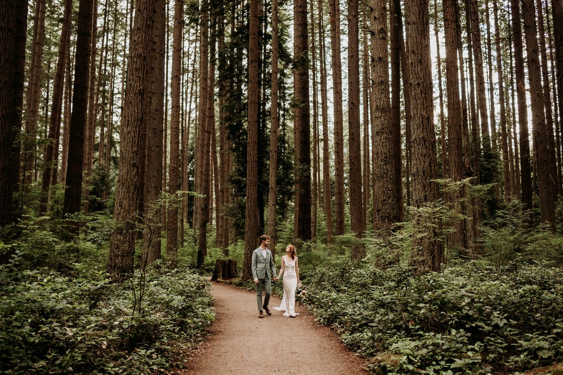 Newlyweds walk along a path surrounded by tall fir trees