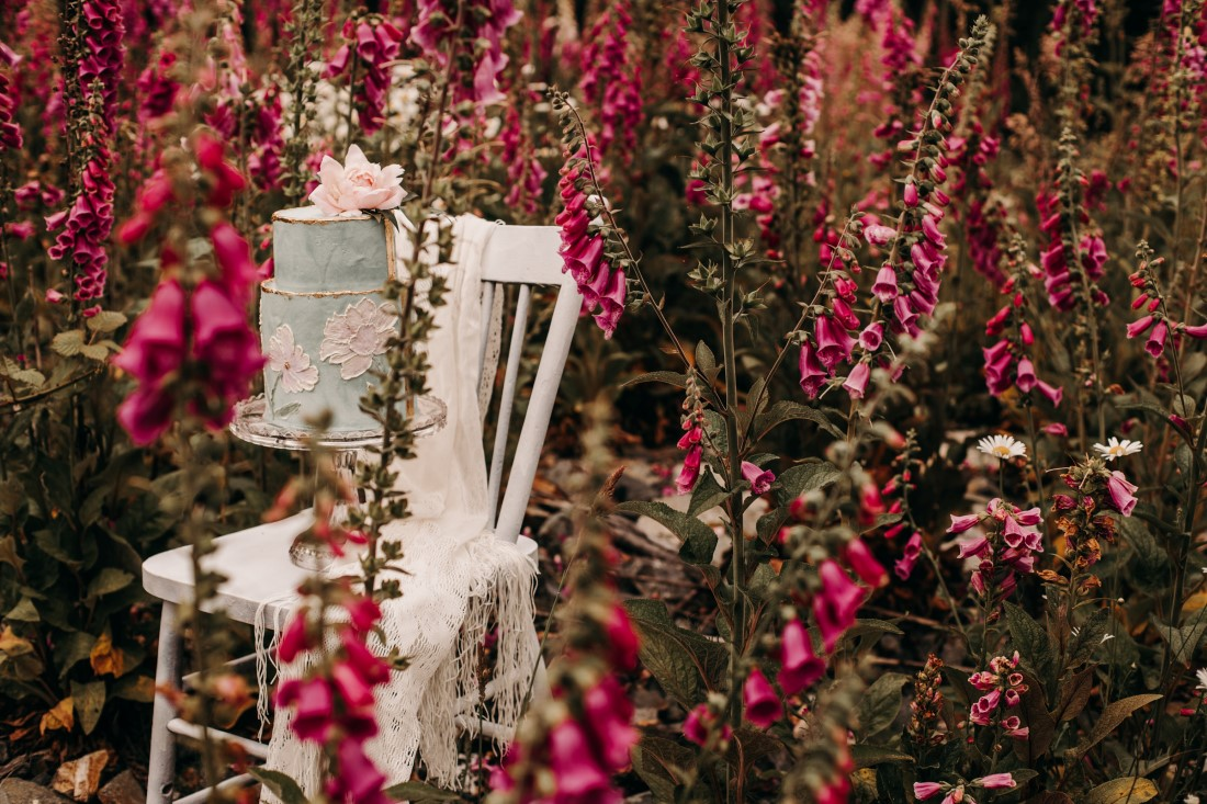 Foxgloves are Forever Island Moments Photography cake on chair with foxgloves