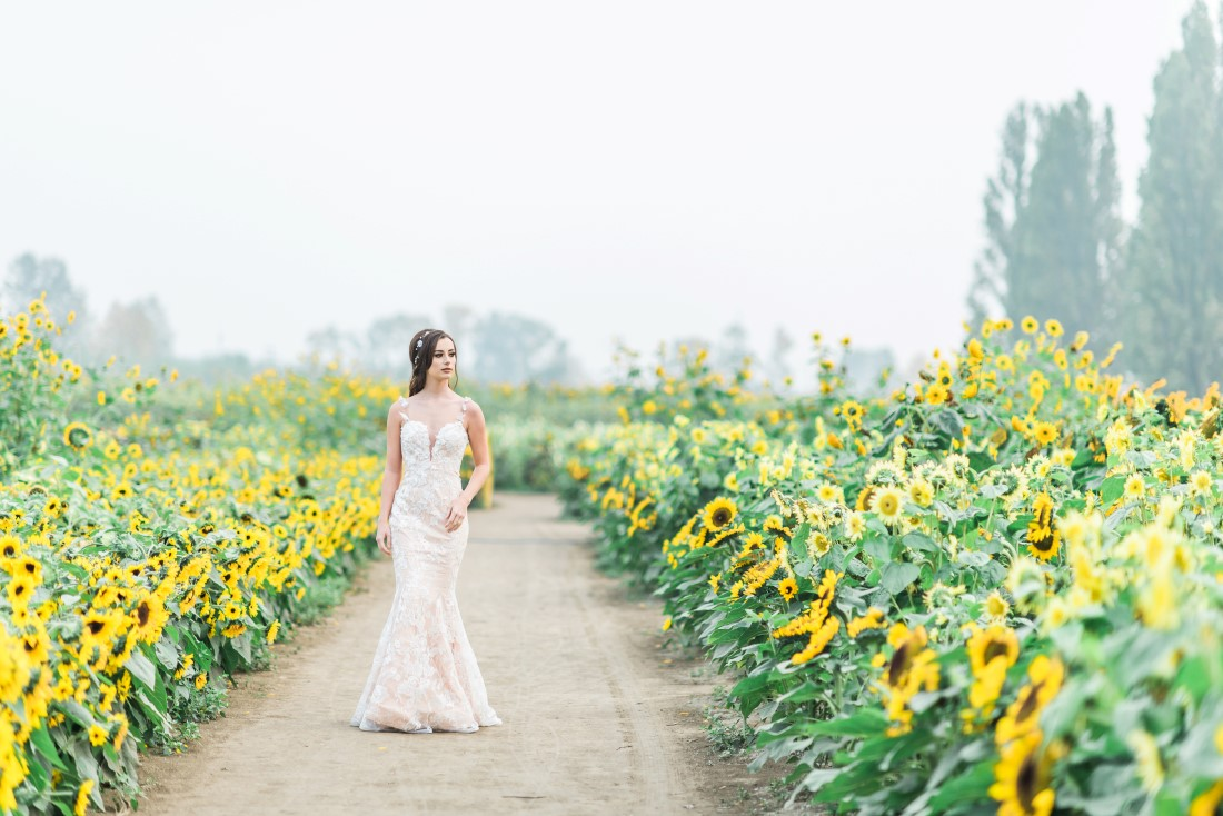 Sunflowers and Sunshine Wedding Inspo bride in fields of sunflowers